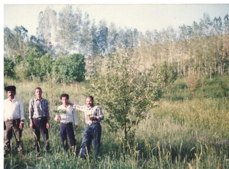 از سمت راست: الف الله محمودی، ایرج و خسرو عبدی، نخشعلی نجفی